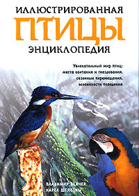 Птицы | Бейчек Владимир, Штястны Карел #1