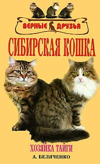 Сибирская кошка #1