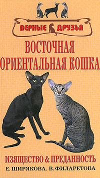 Восточная ориентальная кошка #1