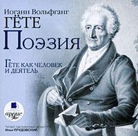 Иоганн Вольфганг Гете. Поэзия. Н. А. Холодковский. Гете как человек и деятель (аудиокнига MP3)   Холодковский #1