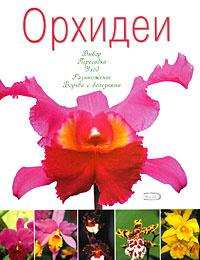 Орхидеи #1