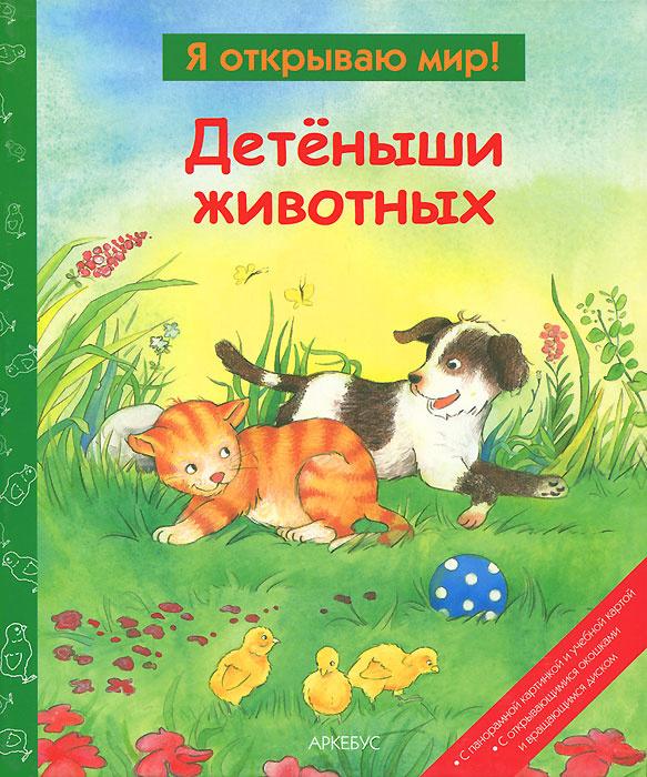 Детеныши животных #1