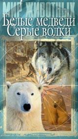 Мир животных: Белые медведи. Серые волки #1