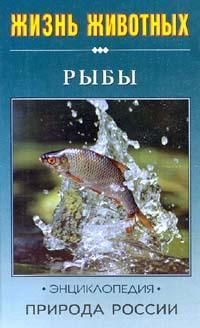 Рыбы | Васильева Екатерина Денисовна #1