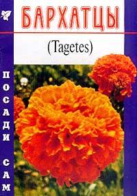 Бархатцы (Tagetes). Серия: Посади сам #1