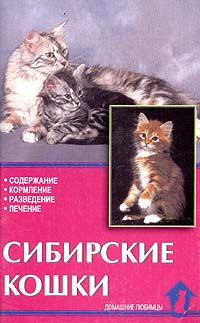 Сибирские кошки. Стандарты. Содержание. Разведение. Профилактика заболеваний  #1