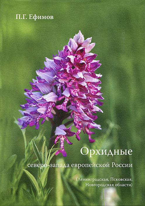 Орхидные северо-запада европейской России #1