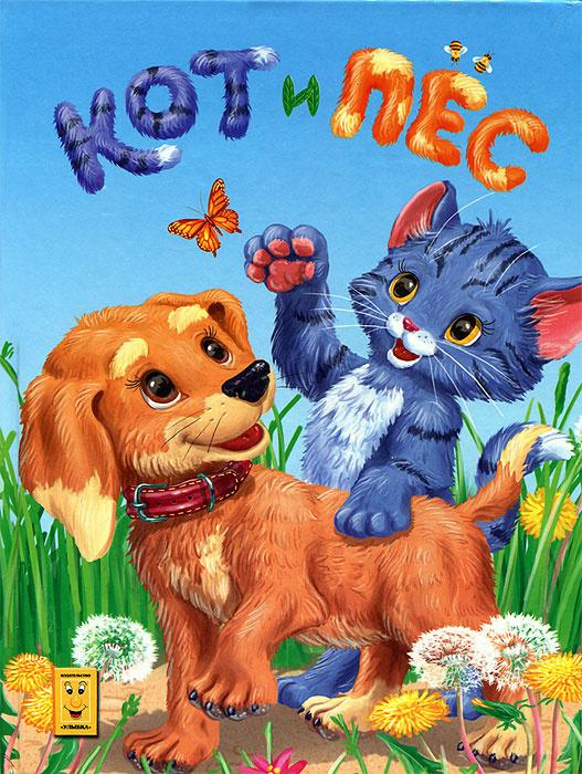 Кот и пес #1