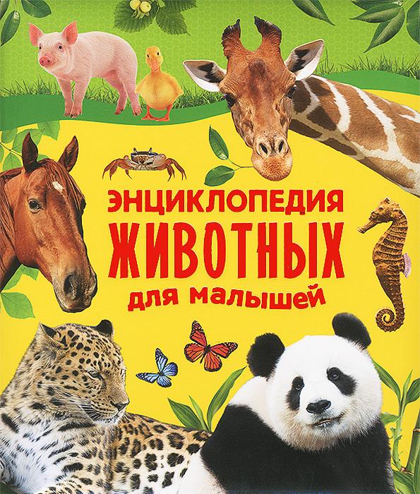 Энциклопедия животных для малышей | Алексеева Екатерина Александровна, Гуричева Екатерина Александровна #1