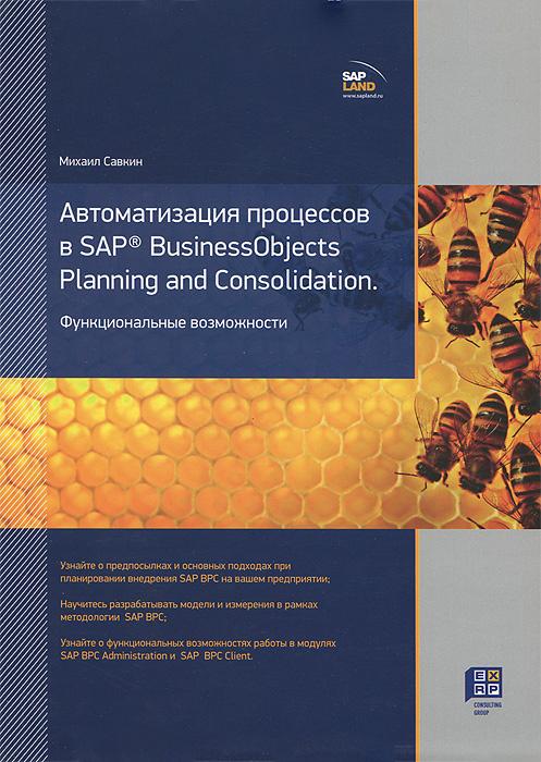 Автоматизация процессов в SAP BusinessObjects Planning and Consolidation. Функциональные возможности #1