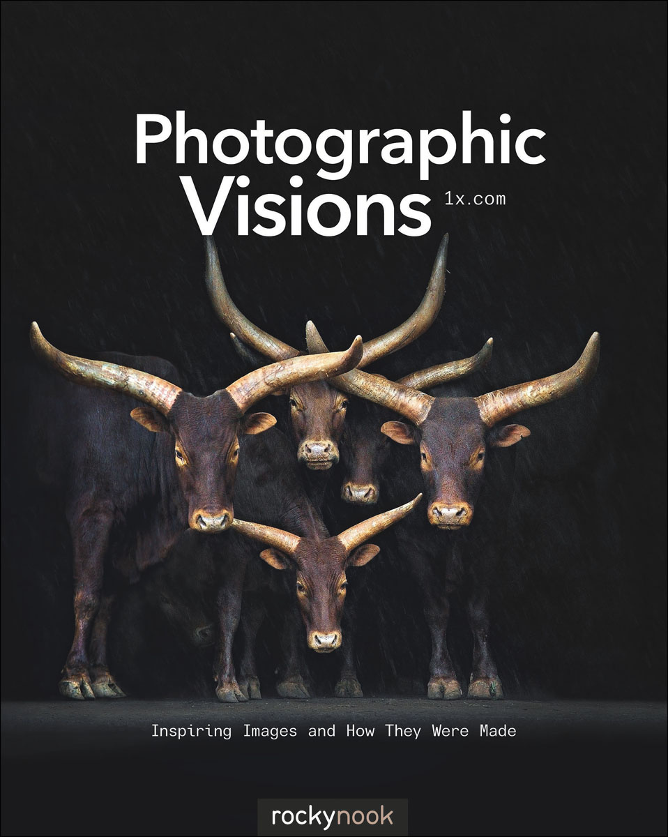 Photographic Visions #1