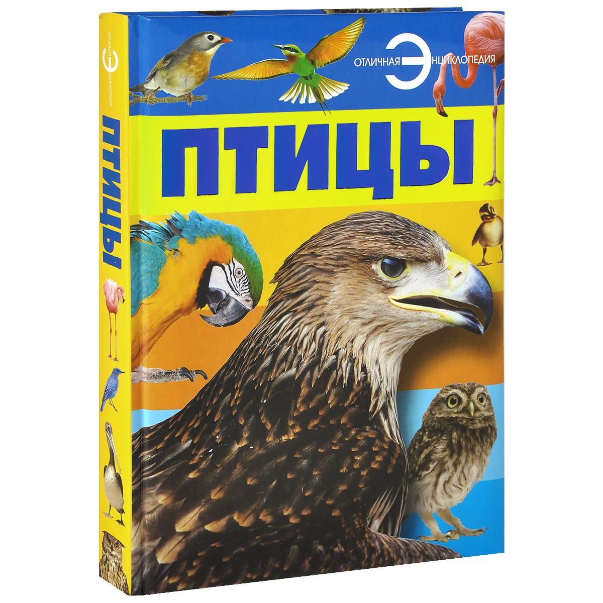 Птицы | Спектор Анна Артуровна #1