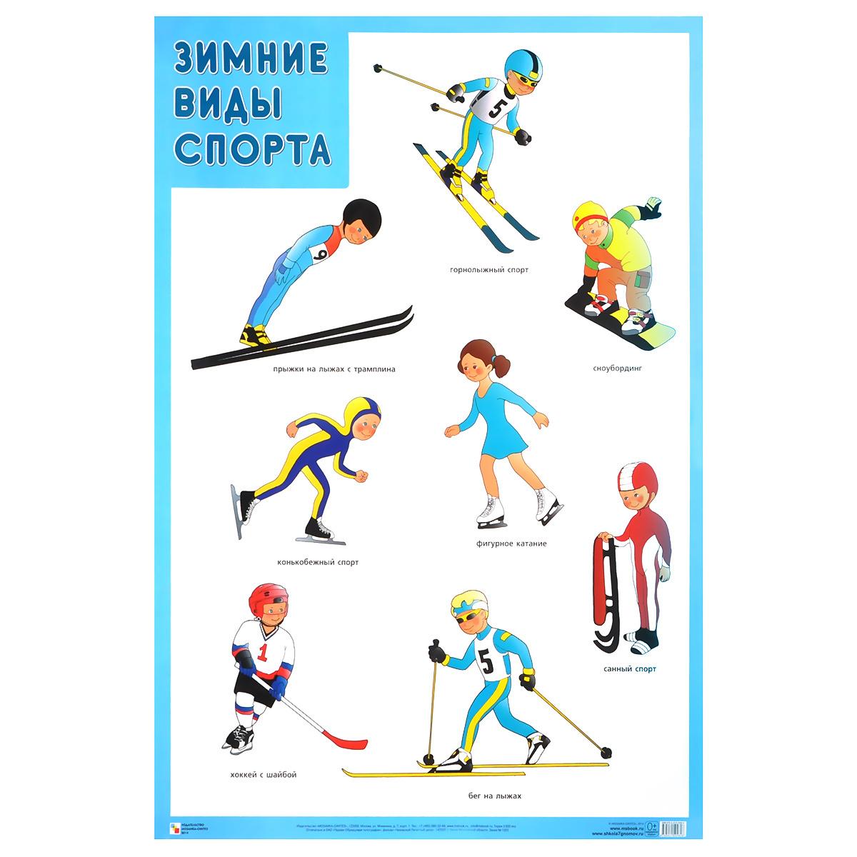 Зимние виды спорта. Плакат #1
