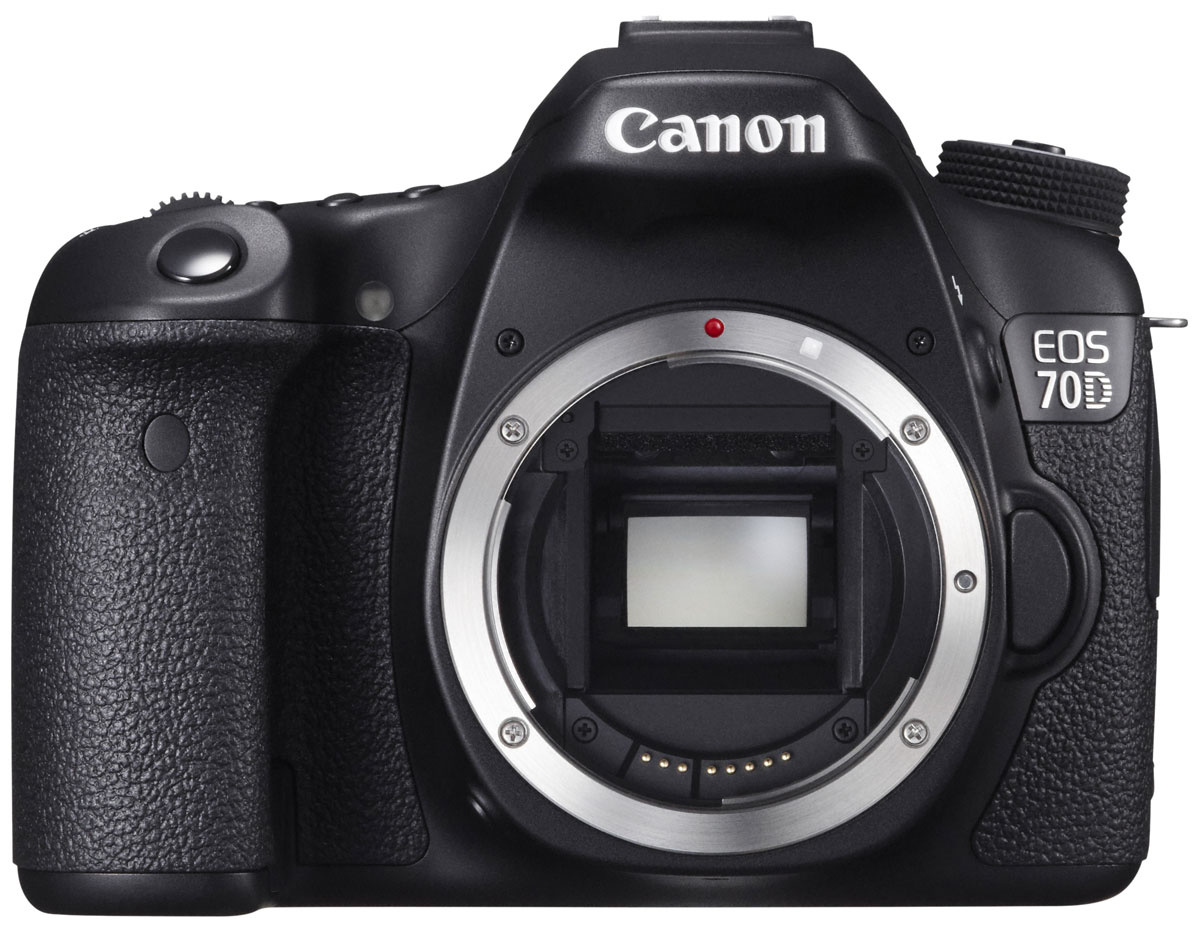сожалению, зеркальные фотоаппараты разница в цене являются продолжением степей