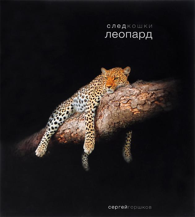След кошки. Леопард | Горшков Сергей #1