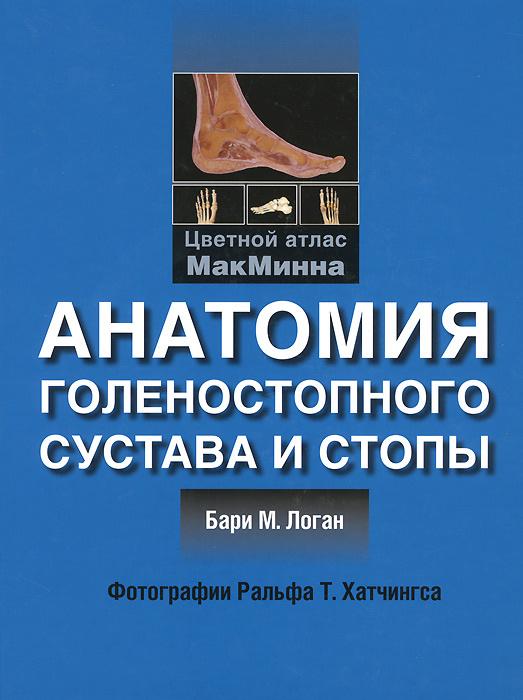 Анатомия голеностопного сустава и стопы | Логан Бари М. #1