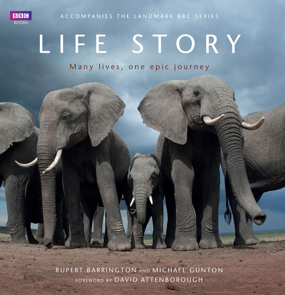 Life Story: Many Lives one Epic Journey | Гантон Майк, Баррингтон Руперт #1