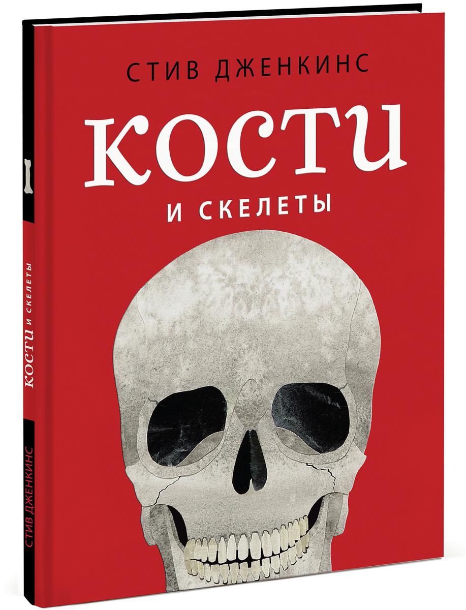 Кости и скелеты #1