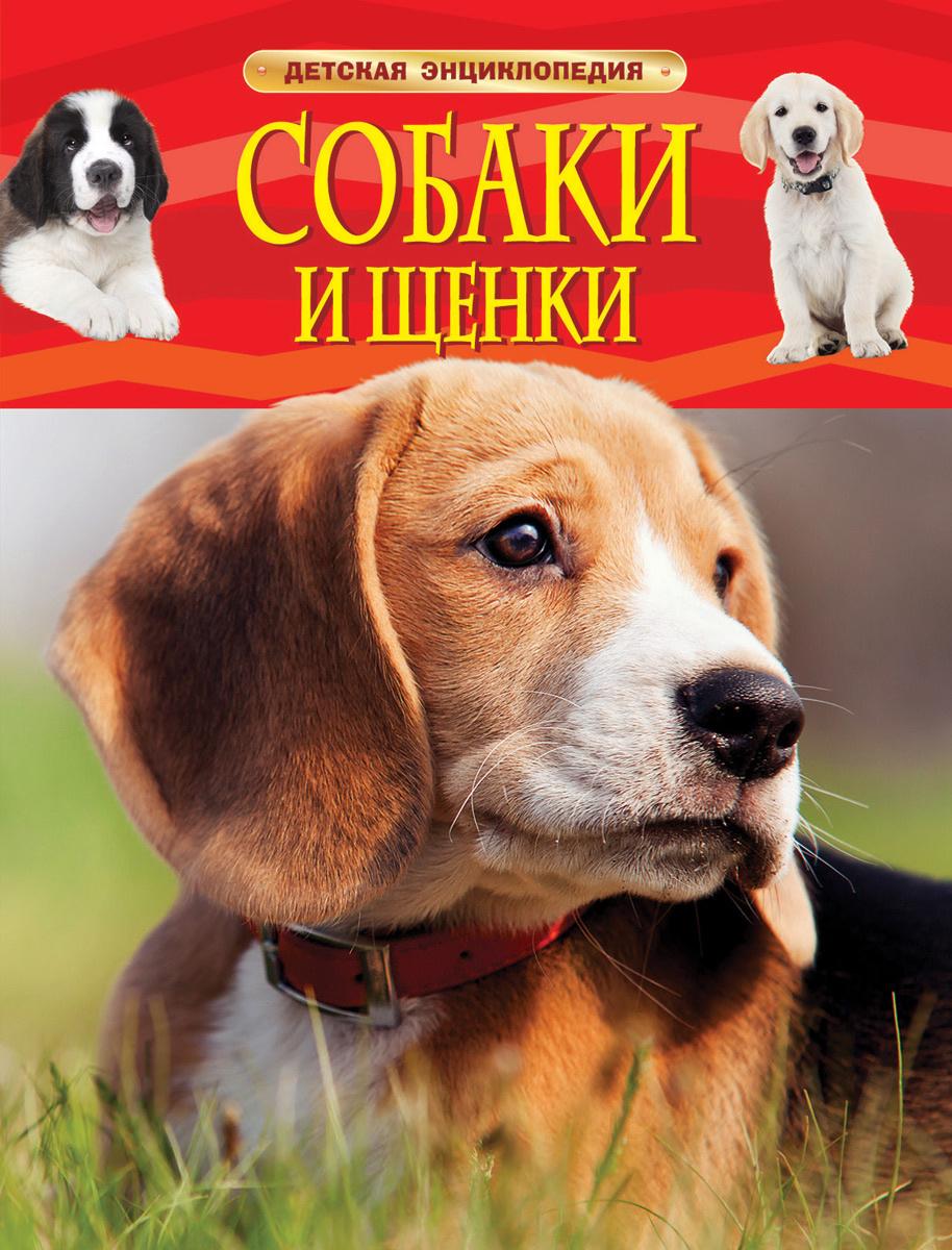Собаки и щенки #1