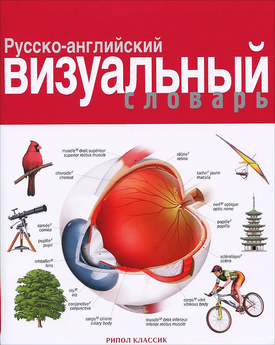 Русско-английский визуальный словарь #1