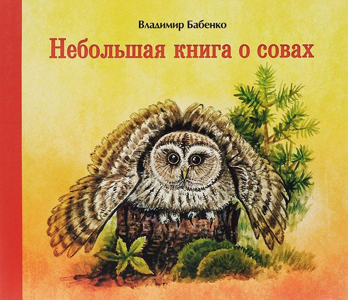 Небольшая книга о совах #1