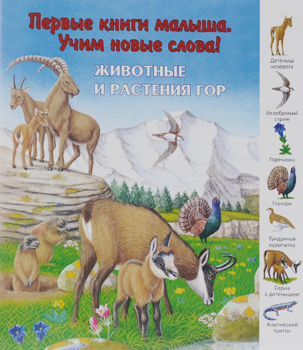 Животные и растения гор #1