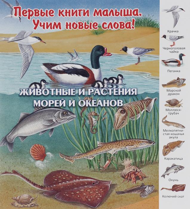 Животные и растения морей и океанов #1