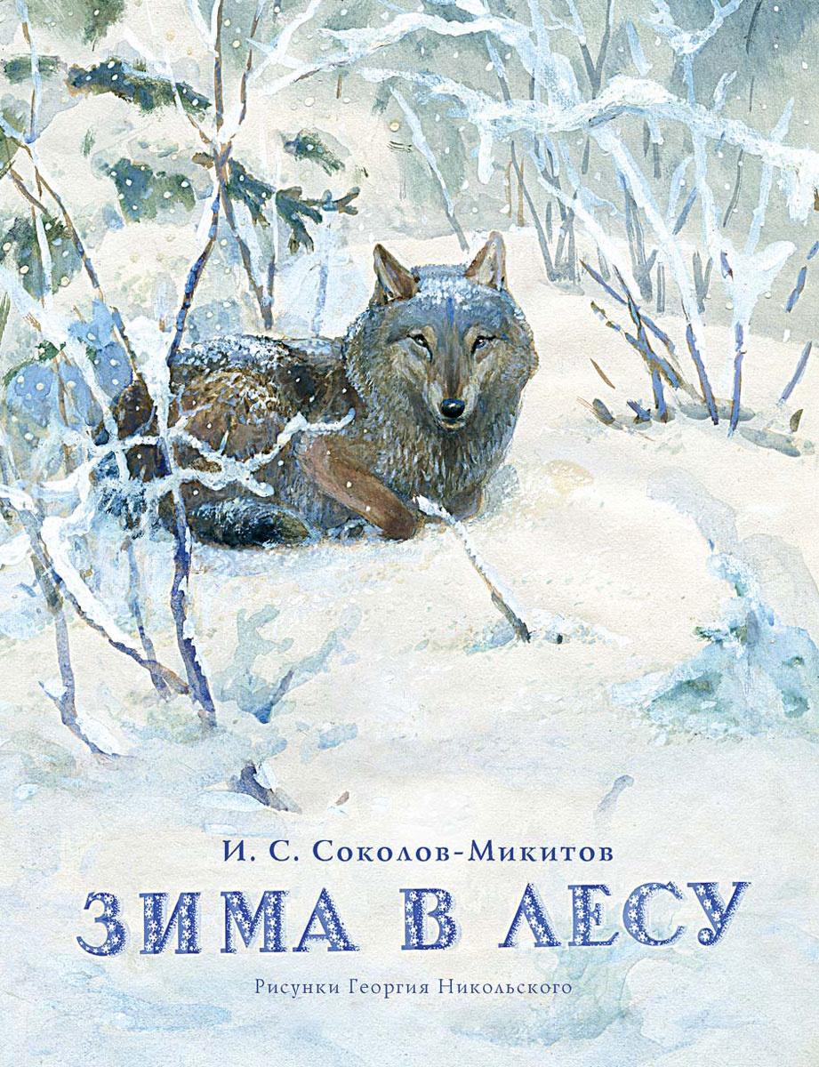 Зима в лесу #1