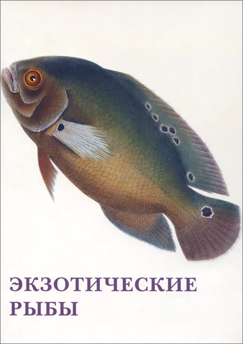 Экзотические рыбы (набор из 15 открыток) #1