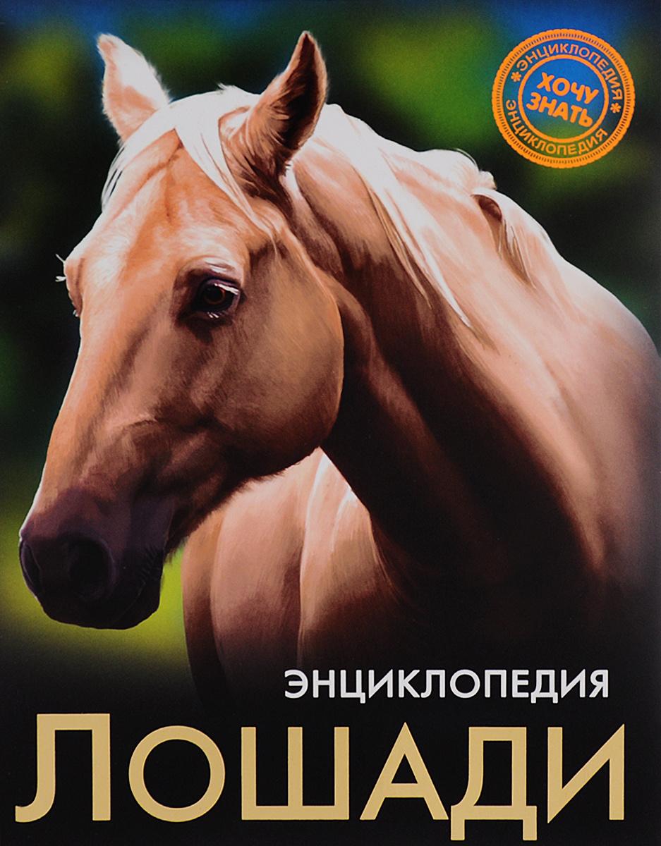 Энциклопедия. Лошади | Калугина Леся #1