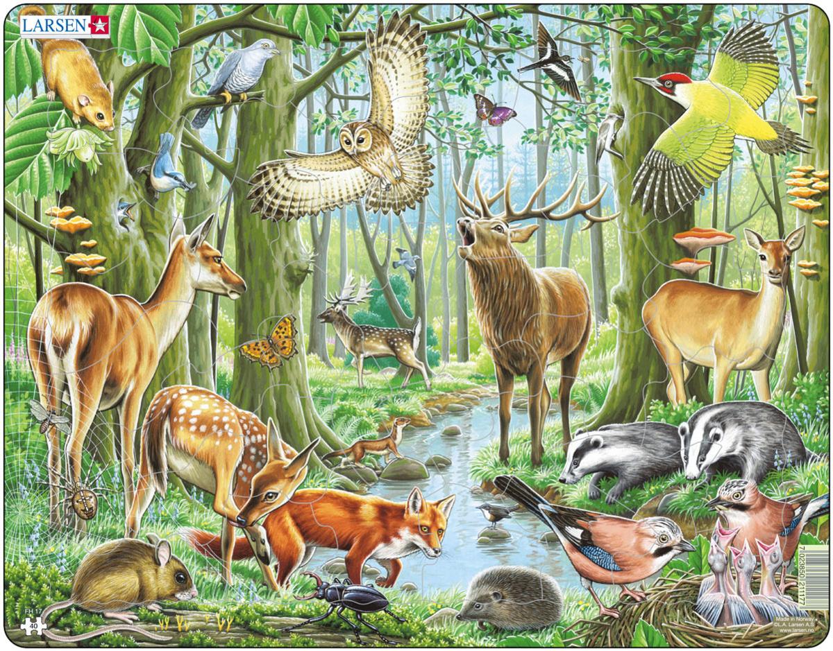 Larsen Пазл Европейский лес #1