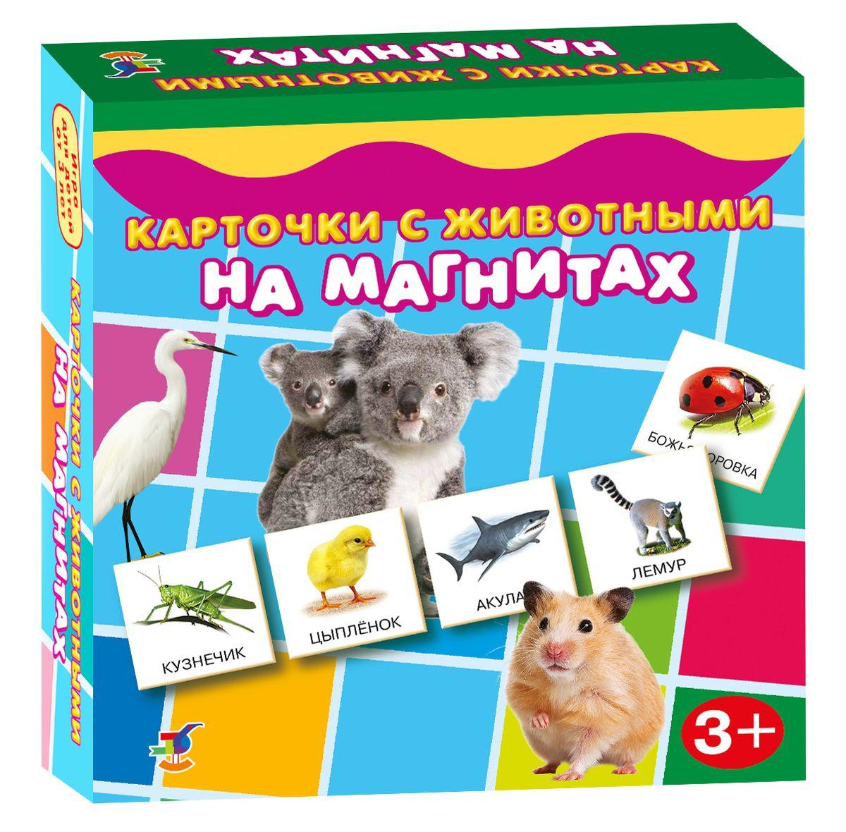 Дрофа-Медиа Карточки с животными на магнитах #1
