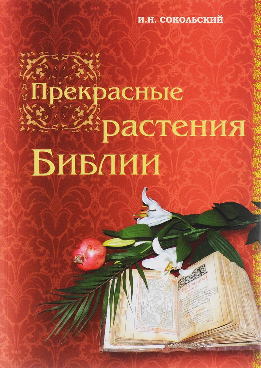 Прекрасные растения Библии #1