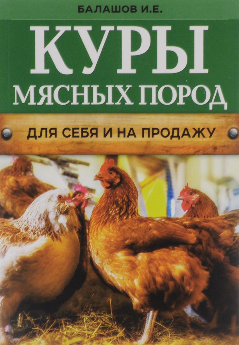 Куры мясных пород   Балашов Иван Евгеньевич #1