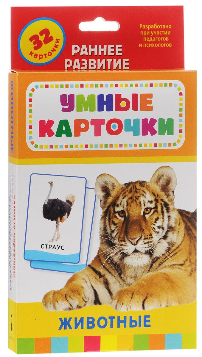 Росмэн Обучающие карточки Животные #1