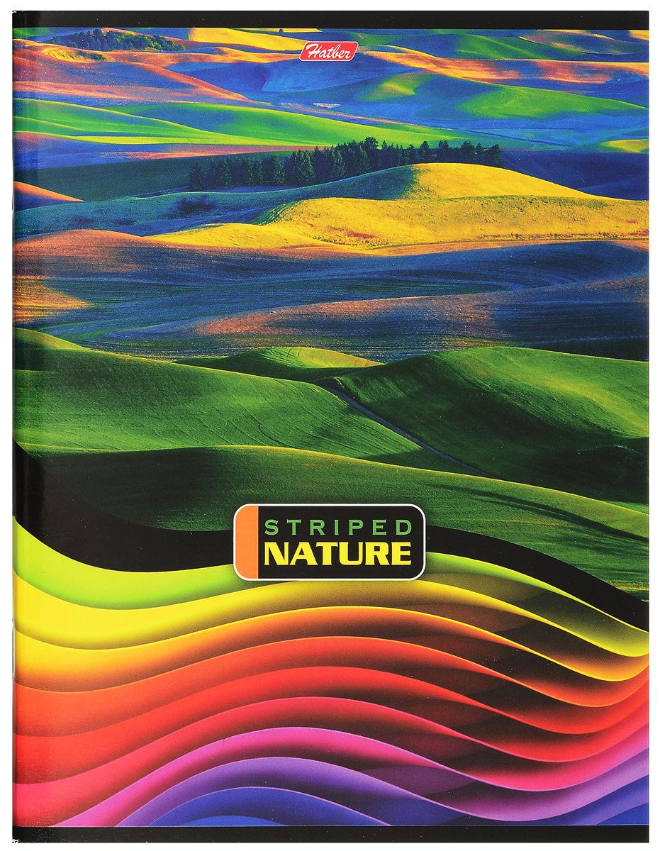 Hatber Тетрадь Полосатый мир 96 листов в линейку цвет мультиколор  #1