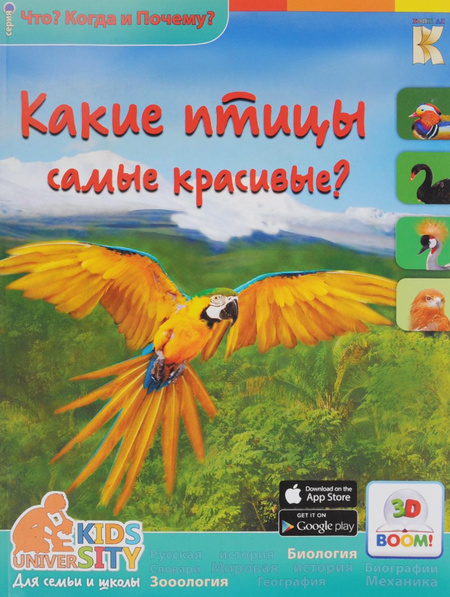 Какие птицы самые красивые? 3D BOOM | Владимиров В. В. #1