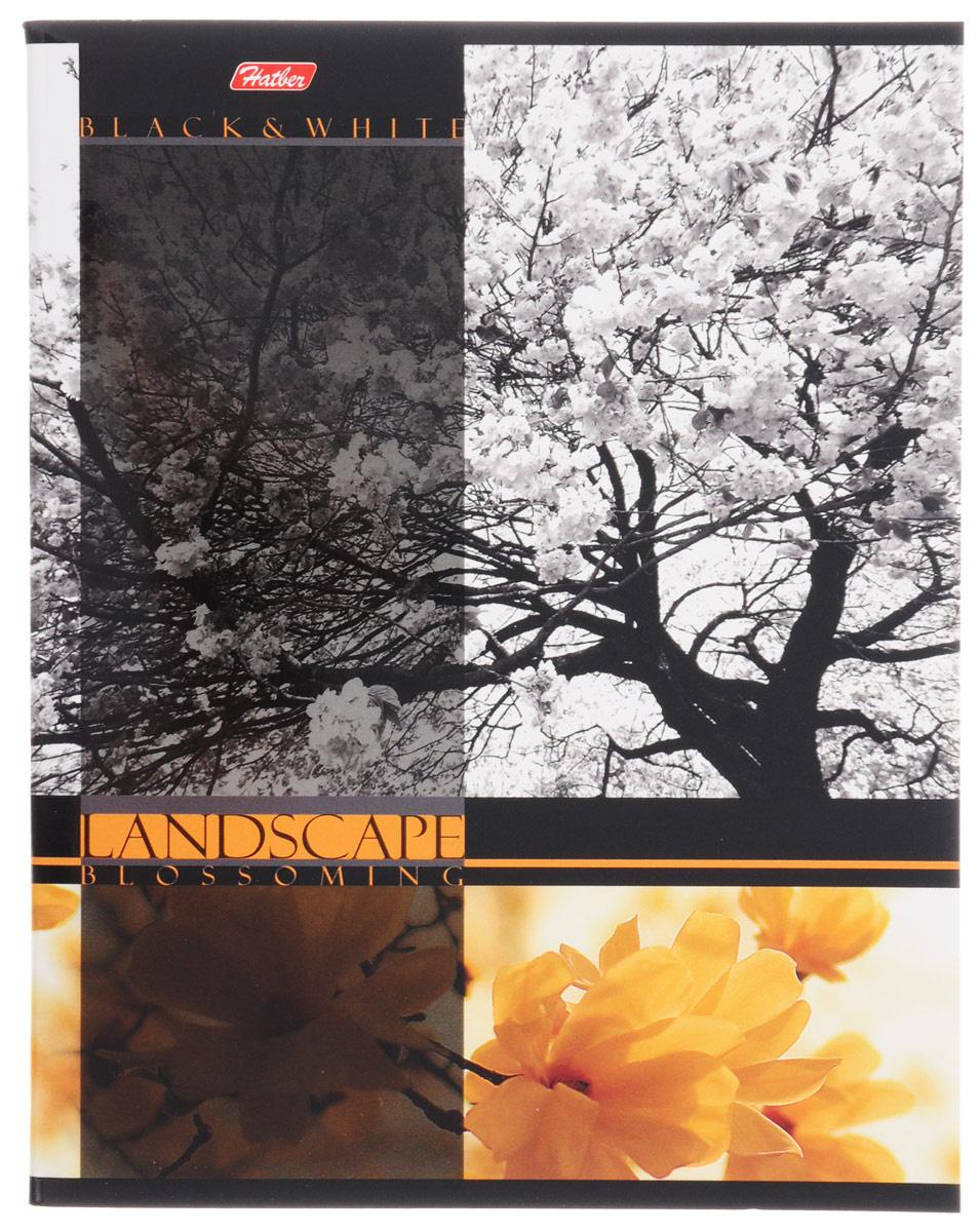 Hatber Тетрадь Цветущие пейзажи 60 листов в клетку цвет желтый  #1