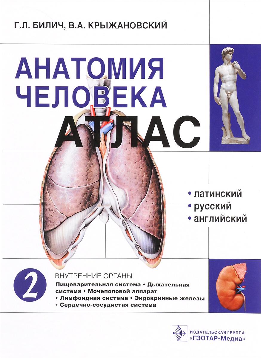 Анатомия человека. Атлас. В 3 томах. Том 2. Внутренние органы | Билич Габриэль Лазаревич, Крыжановский #1