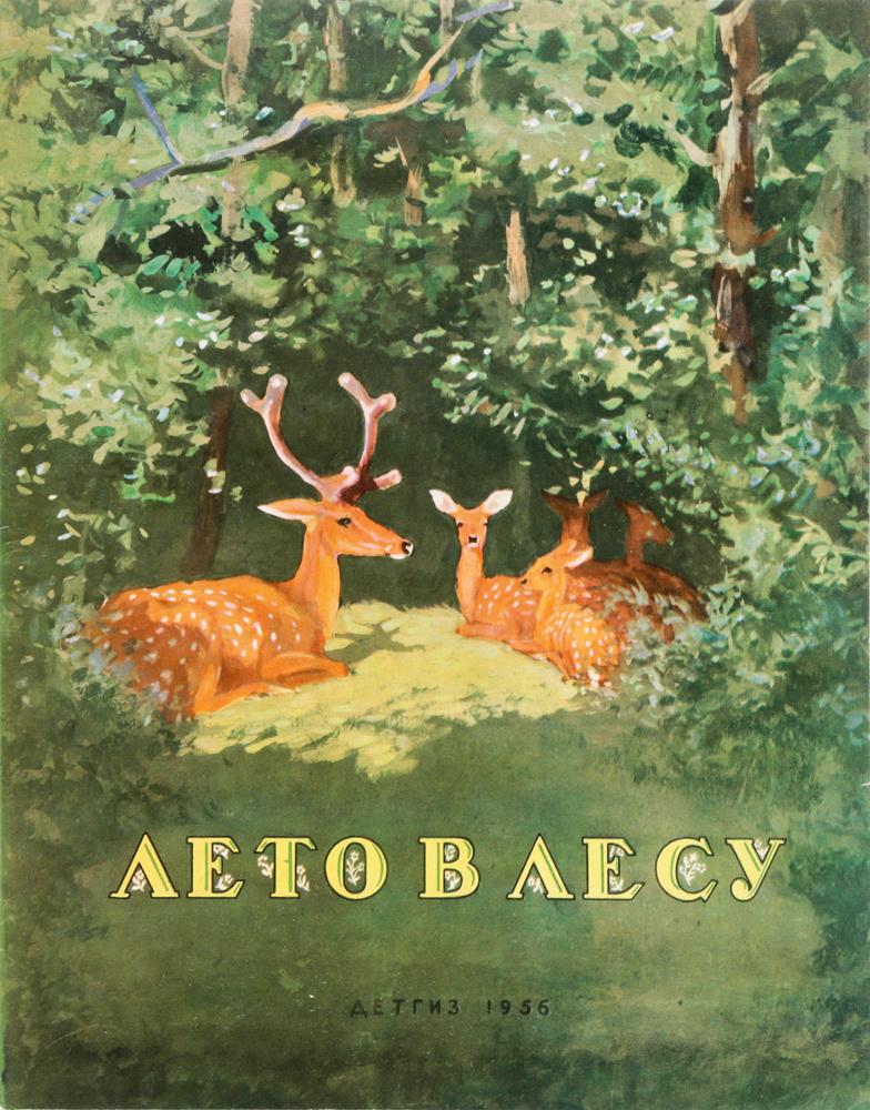 Соколов митков лесные картинки