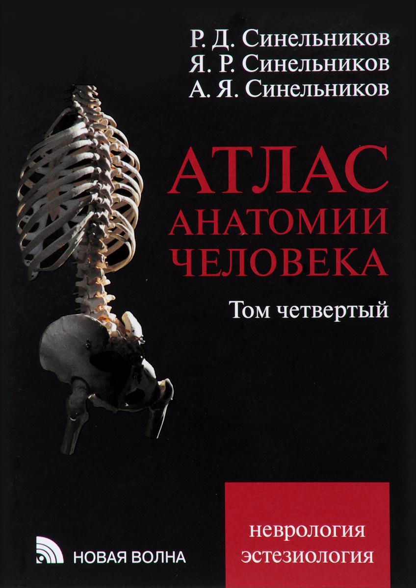Атлас анатомии человека. В 4 томах. Том 4. Учение о нервной системе и органах чувств. Учебное пособие #1