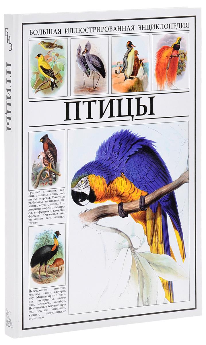 Птицы. Большая иллюстрированная энциклопедия #1