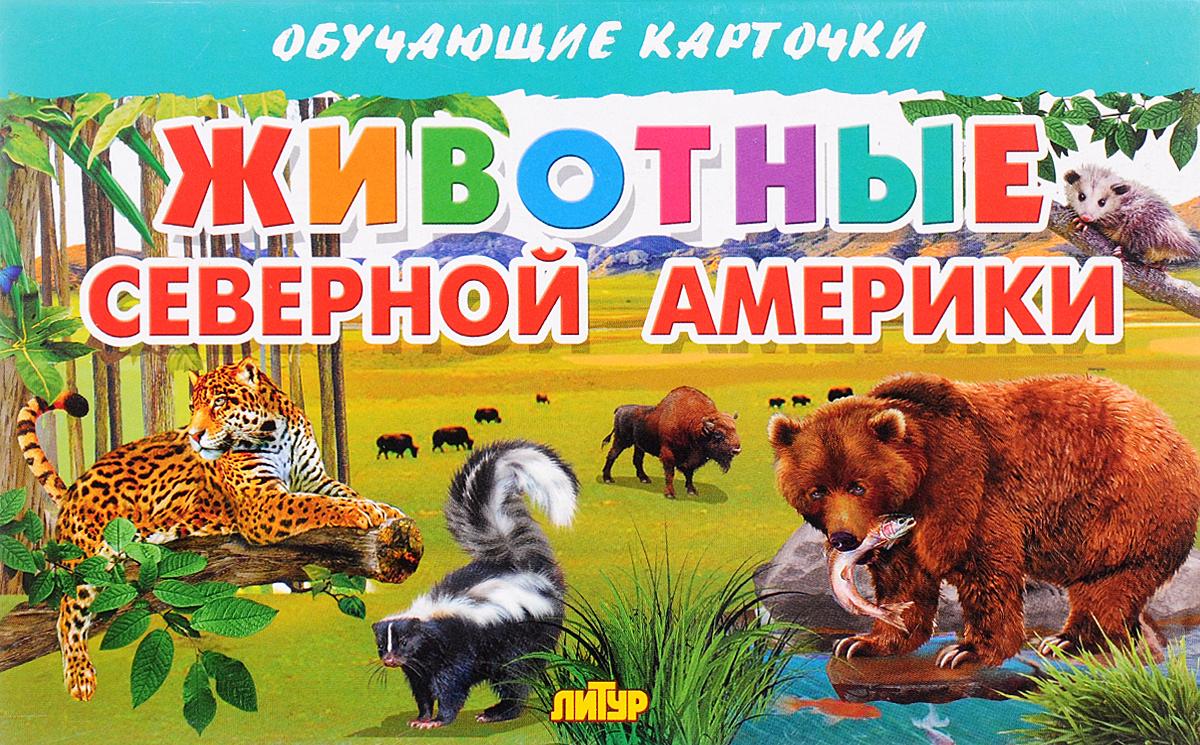Животные Северной Америки (набор из 16 карточек) #1