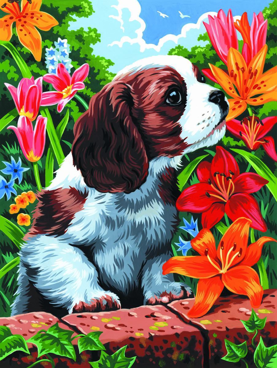 Royal & Langnickel Картина по номерам Щенок и лилии ...