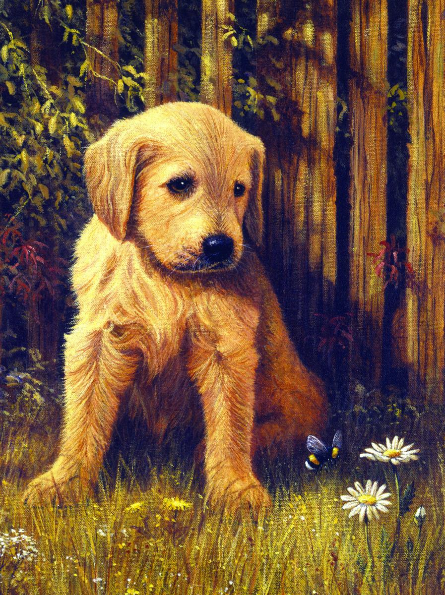 Royal & Langnickel Картина по номерам Грустный щенок ...