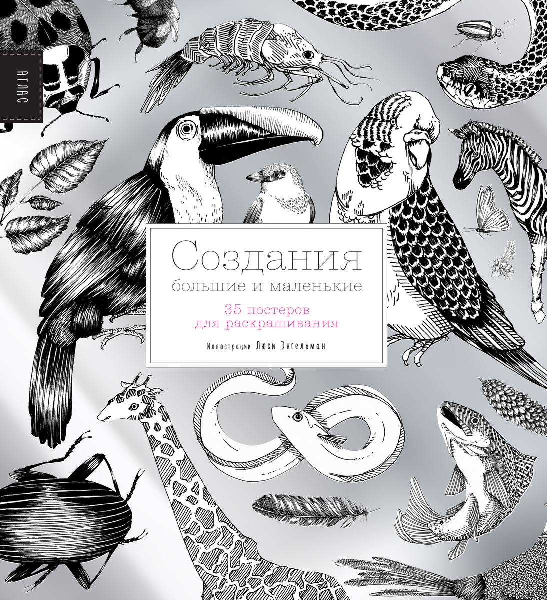 Создания большие и маленькие. 35 постеров для раскрашивания | Энгельман Люси  #1