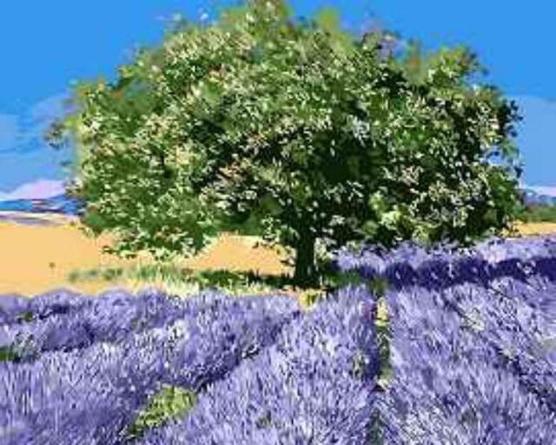 """Картины по номерам на холсте """"Дерево на лавандовом поле"""", 40х50 см, MG7628, Цветной.  #1"""