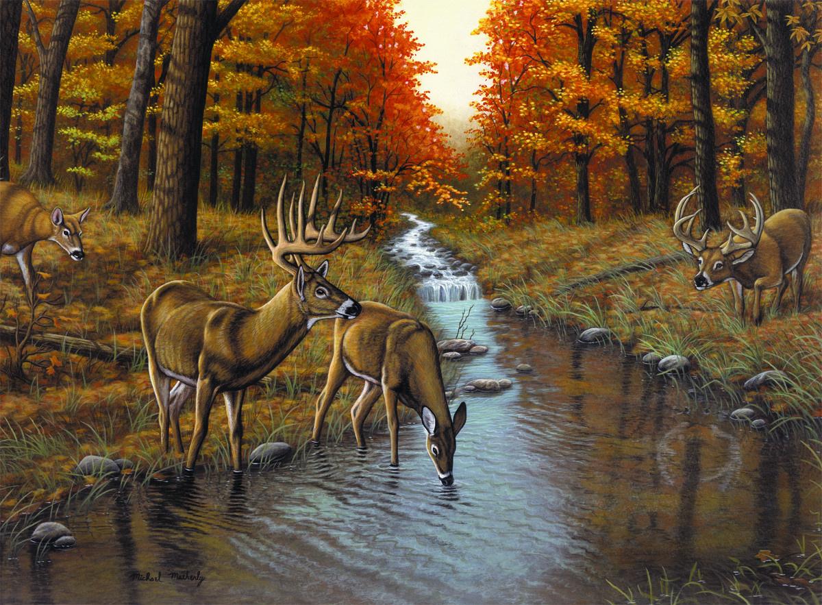 Royal & Langnickel Картина по номерам У ручья — купить в ...