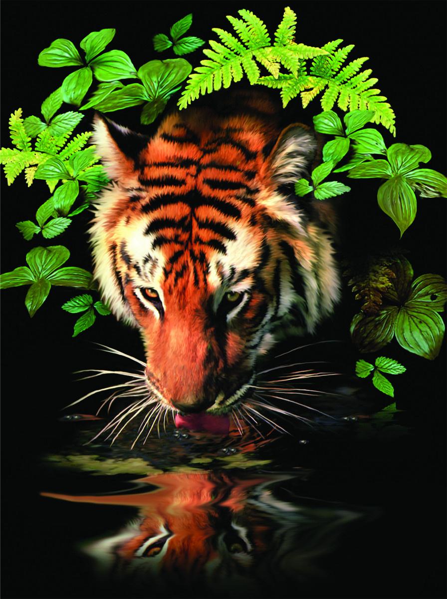 Royal & Langnickel Картина по номерам Тигр PJS 57 — купить ...