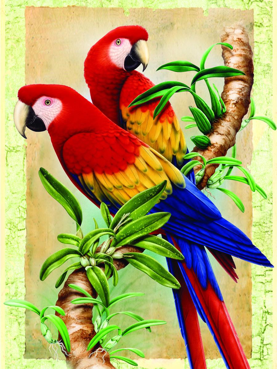 Royal & Langnickel Картина по номерам Бамбуковые попугаи ...